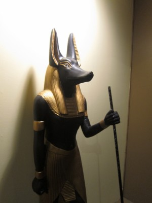 Anubis on guard