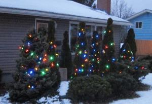 Lights on snow