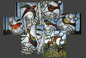 Birds of Schiffer